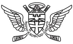 N.S.IJ.V. Radboud Saints